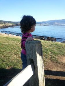Being reflective at Pebble Beach