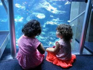 Eliza and Kelsey at the California Academy of Science