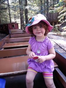 On the Tilden Steam Train