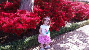 At Filoli Gardens